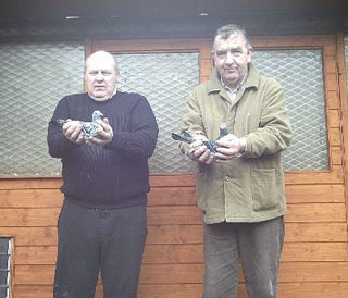 Tommy Cummings, holding Oisin alongside Terence with another of his super pigeons.