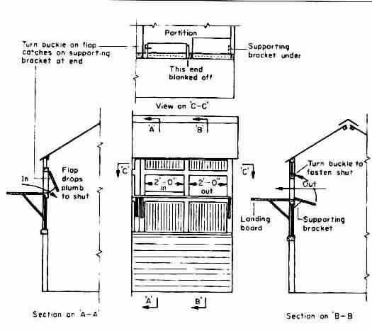 Pigeon Loft Construction Plans http://www.pigeonbasics.com/articles/article40.html